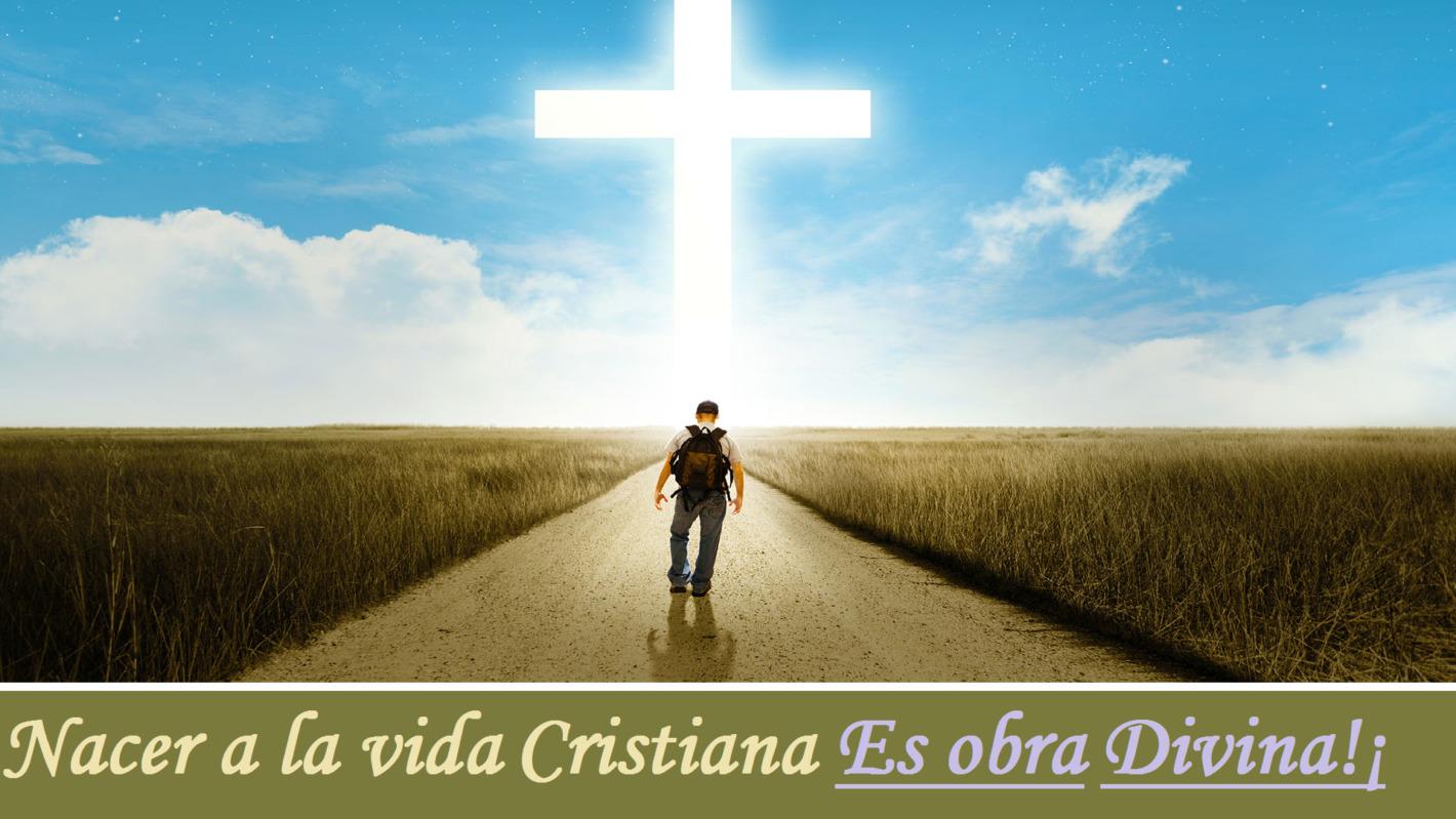 La vida cristiana es una obra divina
