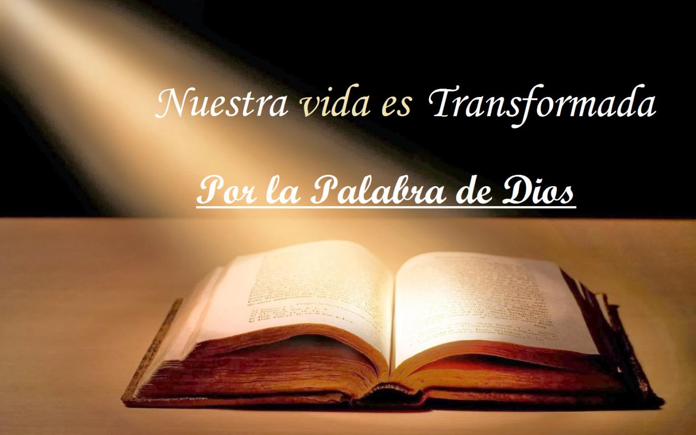 la vida cristiana es transformada por la Palabra