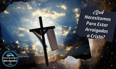 El justo florecerá como la palmera, Salmo 92